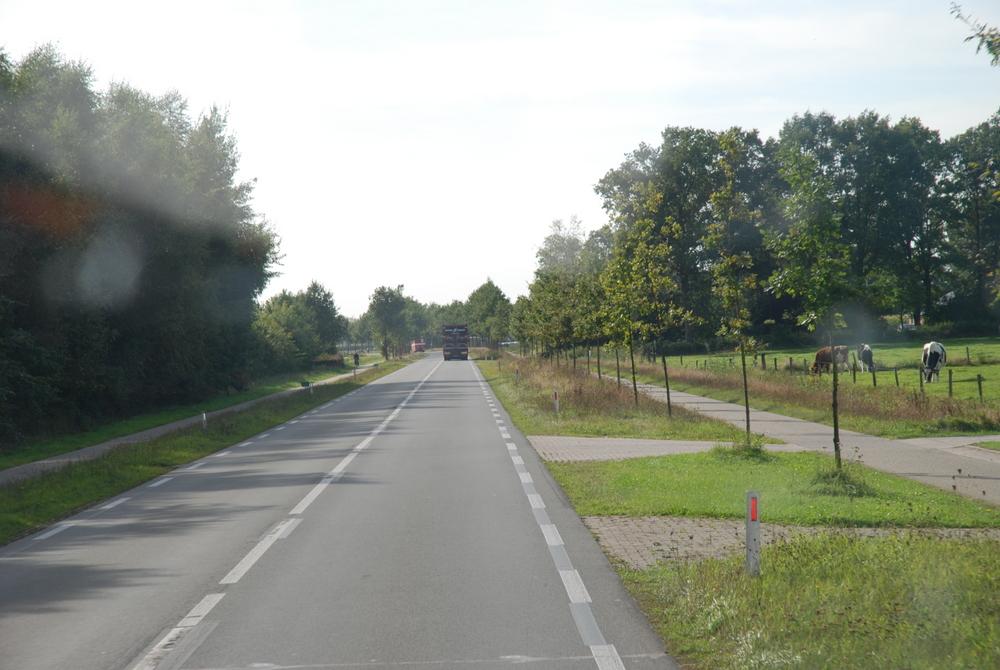 140-ota_najaarsrit2012-189